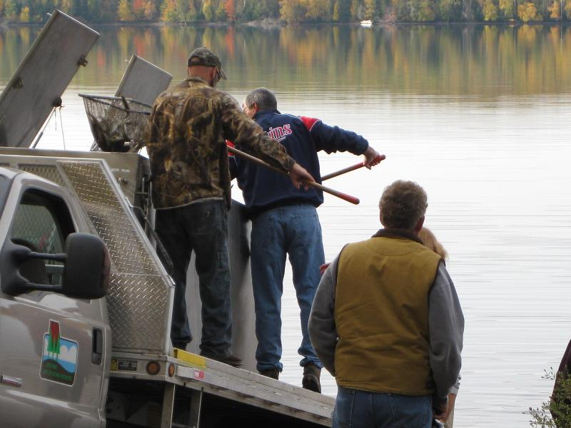 DNR fishery team stocking