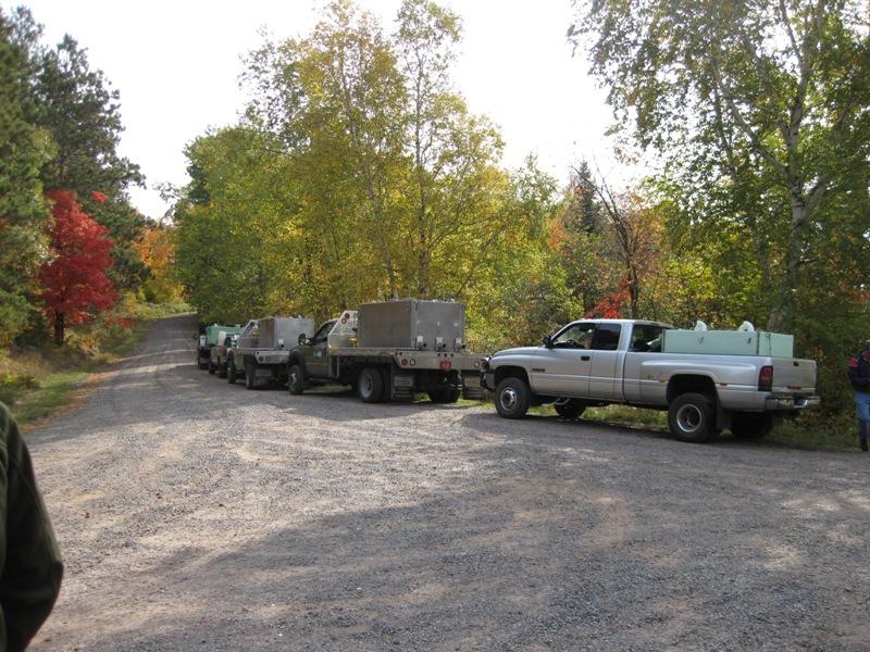 5 of 6 truckloads of walleyes